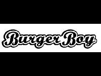 Stray Over Challenge logo